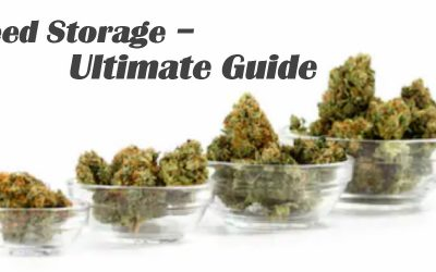 High Quality Weed Storage | Smell Proof Vacuum Containers